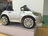 白い子供のMotorz RSの白1のSeater車