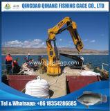 Gaiola da piscicultura do HDPE da qualidade de Hight no oceano