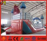 La Chine Inflatable château gonflable avec la diapositive