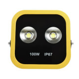 China-Berufshersteller des LED-Flut-Lichtes 100W IP65