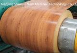 El color de madera de la impresión de la flor del diseño cubrió la bobina de acero para Vietnam