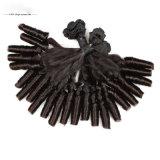 Cabelo do brasileiro do pacote do cabelo do Weave do cabelo humano do Virgin