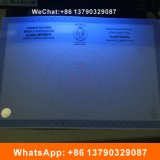 Certificados contra a falsificação de fibra de UV da marca de água