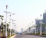 300 Вт переменного тока 12V вертикальный Permannet магнит маленький ветер генератор для продажи (SHJ-NEV300Q3)
