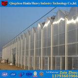 Gchosen professionelles preiswertes Glasminiausgeglichenes Glas-Isoliergewächshaus
