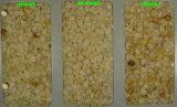 높은 화소 해결책 알몬드 색깔 분류 기계