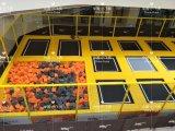 Trampoline новой прокладки конструкции цветастой крытый прямоугольный скача для сбывания