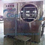 Kleiner Produktionskapazität-Vakuumfrost-Trockner für Nahrung