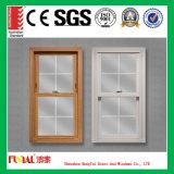 Hochwertig gehangenes Fenster mit Flyscreen aussondern