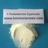 poudre de 1-Testosterone Cypionate Dhb