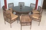 Tableau Furniture-125 extérieur de rotin de loisirs