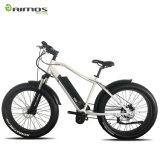 26 ' gros vélo électrique de la bicyclette 350W de vélo électrique du moteur E à vendre