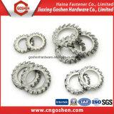 Rondelle de verrouillage en acier inoxydable avec dents extérieures DIN6907