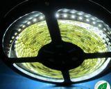 (3528-120-12V) IP33 Indoor LED Strip