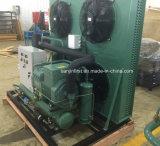 Unità di condensazione del compressore di Bitzer di alta qualità