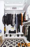 지갑을%s 가진 옷장에 있는 길고 좁은 도보는 선반에 놓는다 (BY-W-27)
