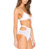 Собственной конструкции Private Label купальный костюм дамы сетка линии бикини