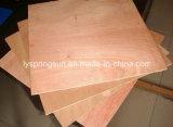 2017 madeira compensada quente de Okume do vidoeiro do Poplar da venda 12mm 15mm 18mm de China