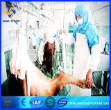 De Lopende band van het Slachthuis van de Slachting van de Geit van Halal/De Machines van de Apparatuur voor de Plak van het Lapje vlees van de Karbonades van het Schaap
