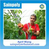 Коммерческие пластиковую пленку материала система крепления выбросов парниковых газов для помидора