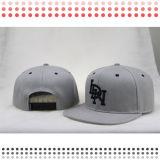 Stickerei 2016 flacher Bill Sports Schutzkappen mit Ihrem Firmenzeichen