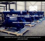 flüssiger Vakuumkompressor des Ring-2BE1305 mit CER Bescheinigung