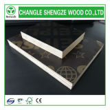 18mm Printed Logo Film Faced Plywood 또는 Construction Plywood/Formwork Plywood/Shuttering Plywood