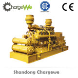 Gruppo elettrogeno del gas naturale di alta qualità 600kw/biomassa/del biogas nel prezzo basso