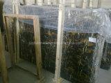 Nero dalle de marbre et mosaïque Portero(marbre doré noir)