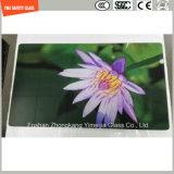 segurança pintada UV do teste padrão da cópia do Silkscreen da pintura de 4-19mm Digitas moderada/vidro temperado para a placa de desbastamento, cozinha, decoração Home com SGCC/Ce&CCC&ISO