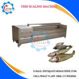 Uso no setor da escala de Peixe Remoção da máquina para venda