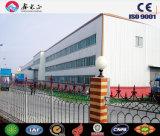 Tettoia personalizzata dell'acciaio di basso costo di alta qualità