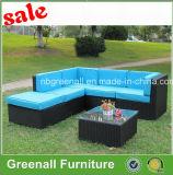 熱い販売の藤によって使用されるテラスの家具