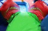 De kleurrijke Dia van het Water van de Binnenplaats Opblaasbare voor Jonge geitjes Chsl367