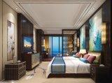5 نجم فندق [سليد ووود] [دووبل رووم] محدّد فندق أثاث لازم مع [تثف]
