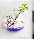 Bacia acrílica redonda fixada na parede dos peixes, tanque de peixes pequeno