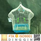 美しい鳥籠を繁殖させているオウム