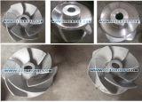 O titânio ANSI Goulds 3196 Substituições de Química do impulsor de Vazamento da Bomba de investimento
