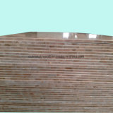 Het Vernisje Blockboard /Melamine Blockboard van de Kern van Falcata