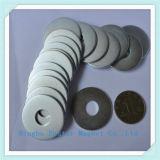 Zink-Überzug-Qualitäts-permanenter Ring-Magnet