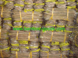Bastón que recorre de cercado natural postes del bambú