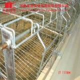 L'IMMERSION chaude a galvanisé un type cage de poulet à rôtir avec le système automatique de buveur