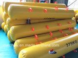 5 van de Inspectie van het Water jaar van de Zak van de Gewichten voor het Testen van de Lading van de Reddingsboot