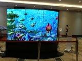 65inch OLED透過LCDの表示