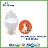 [أم] كلب [بيفيدوبكتريوم] [بروبيوتيكس] محبوب تغطية مواد إنتاج [ب] حيمين