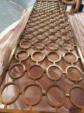Il metallo decorativo dell'acciaio inossidabile seleziona lo schermo della tenda