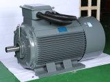 非同期モーター15kw H160 3段階圧縮機90kwのための軽量AC誘導の電気モーター