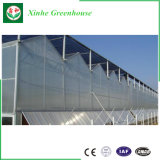 Goldqualitätsbeständiger Tomate-Gewächshaus-Gewächshaus-UVfilm-Plastikpolycarbonat-Gewächshaus