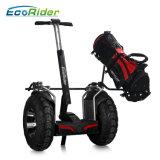 4000W Ecorider Twee Elektrische Fiets van de Autoped van de Mobiliteit van de Scooter van het Wiel de Elektrische Elektrische