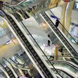 Escalator intérieure en acier inoxydable Etape